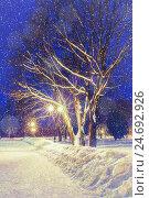Купить «Winter night landscape with falling snow», фото № 24692926, снято 23 марта 2019 г. (c) Зезелина Марина / Фотобанк Лори