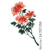 Купить «Хризантемы. Рисунок в стиле се-и», иллюстрация № 24707550 (c) Заноза-Ру / Фотобанк Лори