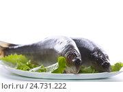 Купить «whole salted herring with lettuce», фото № 24731222, снято 25 ноября 2016 г. (c) Peredniankina / Фотобанк Лори