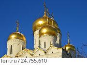 Купить «Благовещенский собор, возведен в 1484-1489 годах. Московский Кремль», эксклюзивное фото № 24755610, снято 20 декабря 2016 г. (c) lana1501 / Фотобанк Лори