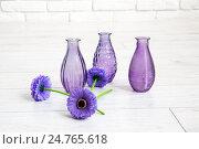 Фиолетовые цветки и вазы. Стоковое фото, фотограф Ольга Еремина / Фотобанк Лори