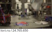 Купить «Milk plant packing machine in running position», видеоролик № 24765650, снято 24 ноября 2016 г. (c) Гурьянов Андрей / Фотобанк Лори