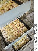 Купить «Яблоки нарезаны для сушки», фото № 24772438, снято 28 августа 2016 г. (c) Александр Романов / Фотобанк Лори