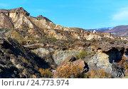 Купить «Пустыня Табернас в Испании. Андалусия, провинция Альмерия», фото № 24773974, снято 22 декабря 2016 г. (c) Alexander Tihonovs / Фотобанк Лори