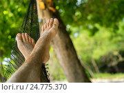 Купить «Женские ноги в гамаке», фото № 24775370, снято 8 декабря 2016 г. (c) Галаганов Дмитрий Александрович / Фотобанк Лори