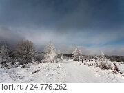Зимний пейзаж. Стоковое фото, фотограф Igor Sirbu / Фотобанк Лори