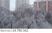 Ледяной дождь в Москве в ноябре 2016 года. Стоковое видео, видеограф Nadya S. / Фотобанк Лори