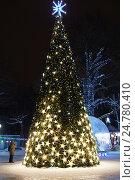 Купить «Сказочный лес. Новогодняя иллюминация в парке Л.Н.Толстого в городе Химки.», фото № 24780410, снято 24 декабря 2016 г. (c) Павел Москаленко / Фотобанк Лори