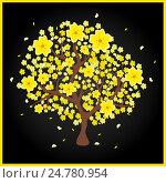 Купить «Hoa mai yellow peach tree», иллюстрация № 24780954 (c) Александр Подшивалов / Фотобанк Лори