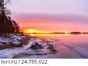 Купить «Рассветный пейзаж на берегу моря, Финлядия», фото № 24785022, снято 7 января 2015 г. (c) Дмитрий Тищенко / Фотобанк Лори