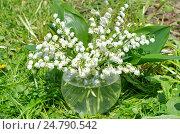 Купить «Букет ландышей в стеклянной вазе на траве», фото № 24790542, снято 29 мая 2016 г. (c) Елена Коромыслова / Фотобанк Лори