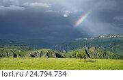 Купить «После дождя», фото № 24794734, снято 29 июня 2016 г. (c) александр жарников / Фотобанк Лори