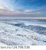 Купить «Forest during a winter day, top view», фото № 24798538, снято 16 декабря 2015 г. (c) Владимир Мельников / Фотобанк Лори