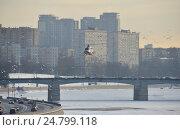 Купить «Вертолет МЧС над Москвой-рекой в районе Новоспасского моста и Краснохолмской набережной», эксклюзивное фото № 24799118, снято 13 декабря 2016 г. (c) lana1501 / Фотобанк Лори