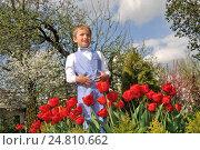 Веселый нарядный мальчик стоит в саду около клумбы с красными тюльпанами. Стоковое фото, фотограф Евгений Суворов / Фотобанк Лори