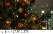 Купить «Christmas fir-tree decorated with New Year's ball», видеоролик № 24813378, снято 30 декабря 2016 г. (c) Игорь Усачев / Фотобанк Лори