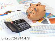 Купить «Графики, диаграммы, калькулятор и ручка. Бизнес-натюрморт», эксклюзивное фото № 24814478, снято 5 января 2017 г. (c) Юрий Морозов / Фотобанк Лори