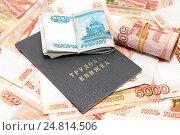 Купить «Трудовая книжка и российские деньги», фото № 24814506, снято 5 января 2017 г. (c) Наталья Осипова / Фотобанк Лори