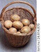 Купить «Клубни сырого картофеля в плетеной корзине на деревянном фоне», эксклюзивное фото № 24814870, снято 5 января 2017 г. (c) Яна Королёва / Фотобанк Лори