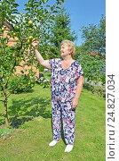 Купить «Пожилая женщина в саду», фото № 24827034, снято 6 августа 2016 г. (c) Ирина Носова / Фотобанк Лори