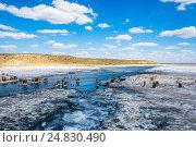 Купить «In the vicinity of the salt lake Baskunchak», фото № 24830490, снято 13 июля 2015 г. (c) Валерий Смирнов / Фотобанк Лори