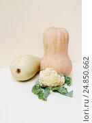 Тыква, кабачок и цветная капуста. Стоковое фото, фотограф Olga Far / Фотобанк Лори
