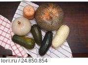 Осенние дары: кабачки и тыквы на салфетке. Стоковое фото, фотограф Olga Far / Фотобанк Лори