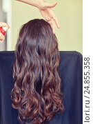 Купить «stylist with hair spray making hairdo at salon», фото № 24855358, снято 15 февраля 2015 г. (c) Syda Productions / Фотобанк Лори