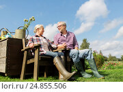 Купить «happy senior couple at summer farm», фото № 24855506, снято 25 августа 2016 г. (c) Syda Productions / Фотобанк Лори
