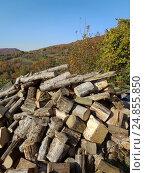 Купить «Дрова на фоне осенней природы, деревенский пейзаж», фото № 24855850, снято 8 ноября 2016 г. (c) DiS / Фотобанк Лори