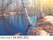 Купить «Весенний пейзаж», фото № 24866962, снято 5 мая 2015 г. (c) Икан Леонид / Фотобанк Лори