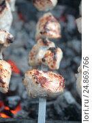 Купить «Шашлык на мангале», фото № 24869766, снято 29 апреля 2013 г. (c) Марина Володько / Фотобанк Лори