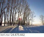 Купить «Зимний пейзаж», эксклюзивное фото № 24875662, снято 14 января 2017 г. (c) Елена Осетрова / Фотобанк Лори