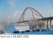 Купить «Бугринский мост в Новосибирске через реку Обь», фото № 24881658, снято 15 января 2017 г. (c) Вероника Заева / Фотобанк Лори
