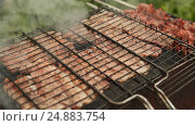 Купить «Chunks of meat fried metal grid outdoors», видеоролик № 24883754, снято 14 января 2017 г. (c) Mikhail Davidovich / Фотобанк Лори
