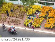 Купить «Tet flower market in Vietnam, top view», фото № 24921730, снято 6 февраля 2016 г. (c) Александр Подшивалов / Фотобанк Лори
