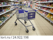 Купить «empty shopping cart or trolley at supermarket», фото № 24922198, снято 2 ноября 2016 г. (c) Syda Productions / Фотобанк Лори