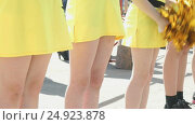Купить «Cheerleaders girls dressed in yellow costumes», видеоролик № 24923878, снято 2 декабря 2016 г. (c) worker / Фотобанк Лори