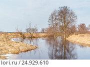 Весеннее половодье. Стоковое фото, фотограф Дмитрий Тищенко / Фотобанк Лори