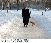 """Купить «Пожилая женщина гуляет с собакой. Прогулочная зона отдыха в парке """"Долина реки Яузы"""". Район Северное Медведково. Москва», эксклюзивное фото № 24929998, снято 21 января 2017 г. (c) lana1501 / Фотобанк Лори"""