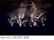 Купить «Underwater view of Synchronized Swimming», фото № 24931654, снято 14 января 2017 г. (c) Некрасов Андрей / Фотобанк Лори