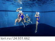 Купить «Underwater view of Synchronized Swimming», фото № 24931662, снято 14 января 2017 г. (c) Некрасов Андрей / Фотобанк Лори