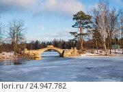 Купить «Горбатый мост в Гатчинском парке, зимний пейзаж», фото № 24947782, снято 21 января 2017 г. (c) Юлия Бабкина / Фотобанк Лори