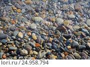 Купить «Разноцветная морская галька. Крым, Яшмовый пляж на мысе Фиолент», фото № 24958794, снято 13 сентября 2016 г. (c) Ирина Носова / Фотобанк Лори