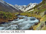 Купить «Spring stream», фото № 24966978, снято 22 мая 2016 г. (c) александр жарников / Фотобанк Лори