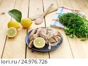 Купить «Морепродукты. Варенные раки-богомолы (Squilla mantis) на тарелке», фото № 24976726, снято 26 января 2017 г. (c) Татьяна Ляпи / Фотобанк Лори