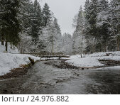Мост через реку в зимнем лесу. Стоковое фото, фотограф Соколов Дмитрий / Фотобанк Лори