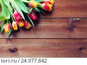 Купить «close up of tulip flowers on wooden table», фото № 24977842, снято 27 января 2016 г. (c) Syda Productions / Фотобанк Лори