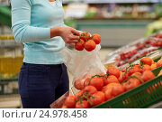 Купить «woman with bag buying tomatoes at grocery store», фото № 24978458, снято 2 ноября 2016 г. (c) Syda Productions / Фотобанк Лори