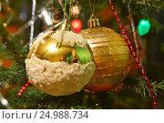 Два желтых новогодних шара висят на новогодней ёлке. Праздник. Стоковое фото, фотограф Галимова Надежда Александровна / Фотобанк Лори